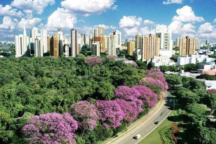 Em Maringá, 261.717 vão eleger novo prefeito