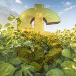 Governo proíbe banco público de renegociar dívidas rurais de R$ 17 bilhões