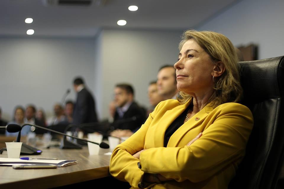 """Maria Letícia: """"Cuidar das mães brasileiras e paranaenses é investir em sociedade mais justa e melhor"""""""