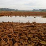 Devagarinho, pior cenário de seca em 100 anos se instalou no Paraná
